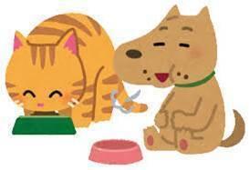 ブログ用犬猫.jpg